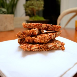 seedy cherry bars finished
