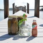 Pickle Shots - 1